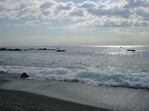こゆるぎの浜.JPG