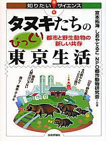タヌキ本.jpg