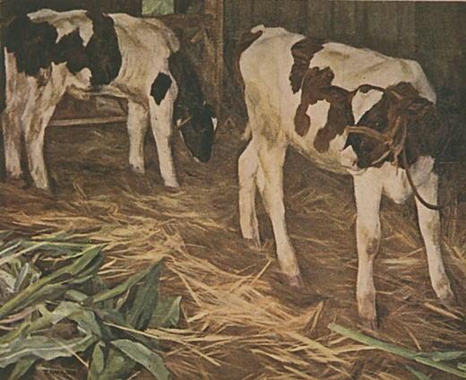 三上知治「仔牛」第2回帝展1920.jpg