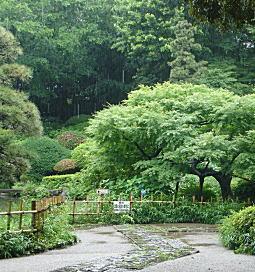 三島山(甘泉園).jpg