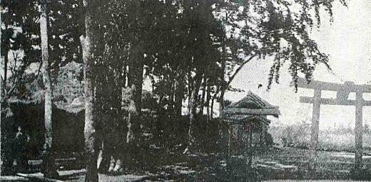 上落合浅間社大塚古墳1911.jpg