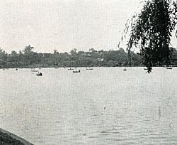 不忍池ボート1955.jpg
