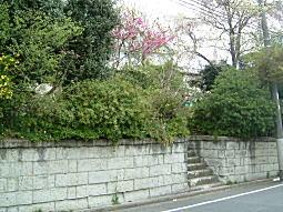 中ノ道大谷石垣2.JPG