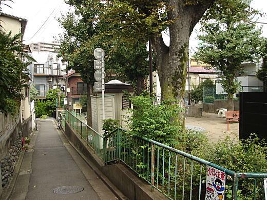 中井駅の道.JPG