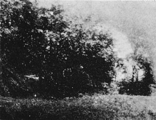 中野区史「沼袋氷川神社古墳」1943.jpg