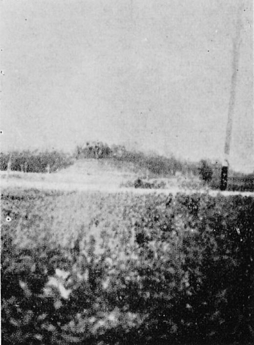 中野区史「片山遺跡」1943.jpg