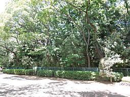 亀甲山古墳2.JPG