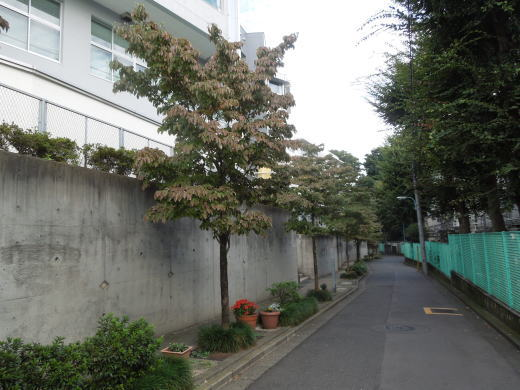 伊藤博文邸跡1.JPG