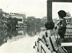 十二社池1955.jpg