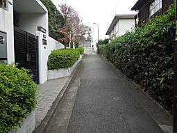 吉屋信子散歩道1.JPG