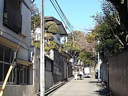 吉屋信子散歩道2.JPG