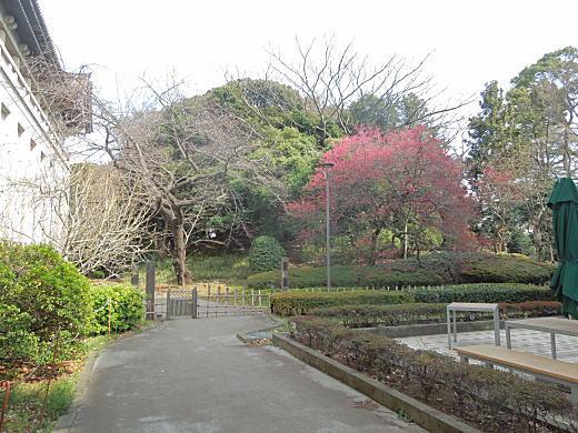 国立博物館古墳1.JPG