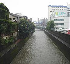 増水の神田川.JPG
