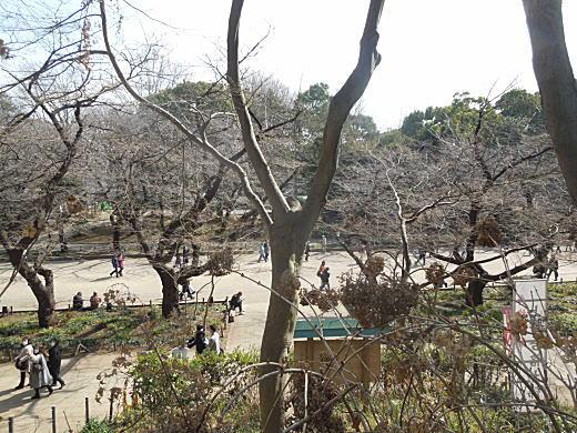 大仏山から摺鉢山.JPG