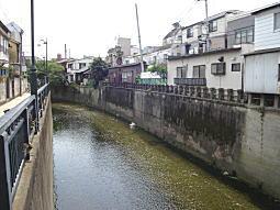 妙正寺川4.JPG