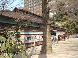 学習院厩舎4.JPG