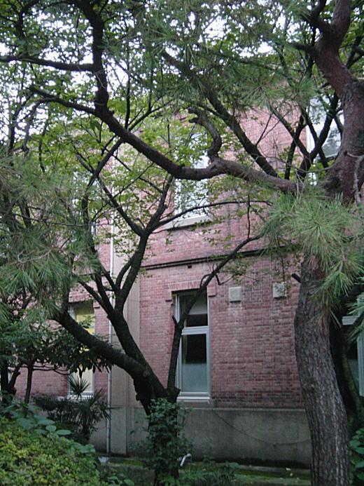 学習院女子大学3.JPG