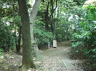 富士見茶屋「珍々亭」眺望.JPG