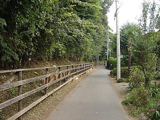 小金井ハケの道.JPG