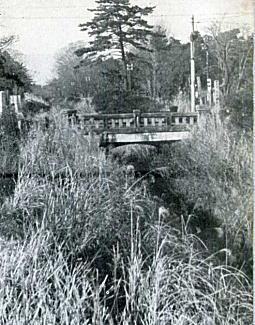 小金井橋1955頃.jpg