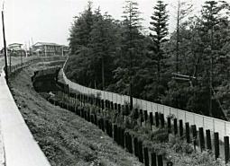 小金井野川1974.jpg