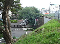 山手線線路土手1.JPG