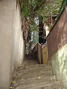 山王バッケ階段.JPG