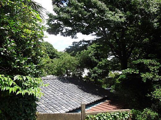 崖淵1.JPG