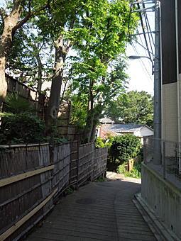 崖淵2.JPG