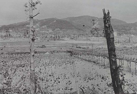 広島城から白鳥2.jpg