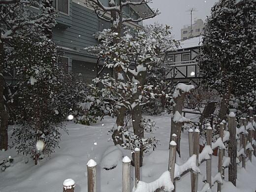 彝アトリエ雪景4.JPG