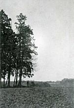 戸山ヶ原1909.jpg