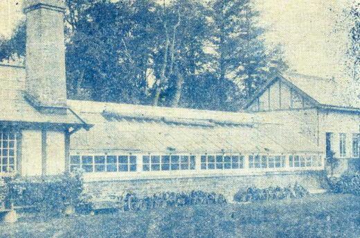 戸田邸温室1919.jpg