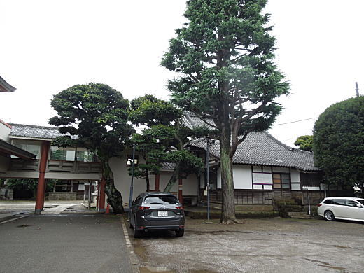 新井薬師北側.JPG