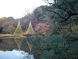 新江戸川公園.JPG
