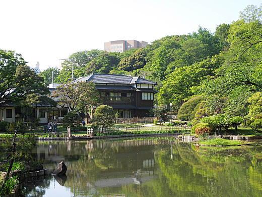 日本女子大学1.JPG