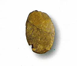 旧石器Ⅸb層.jpg