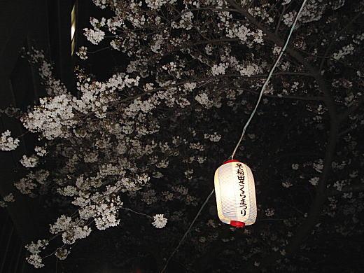 早稲田さくら祭.JPG