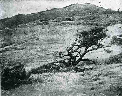 曇れる朝1915.jpg