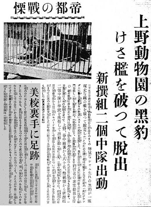 東京朝日新聞19360725夕.jpg