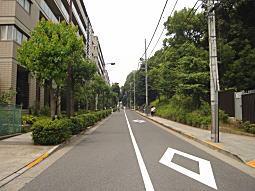 椿坂2009.JPG