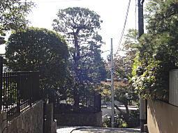 権兵衛山(大倉山).JPG