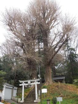 水神社1.JPG