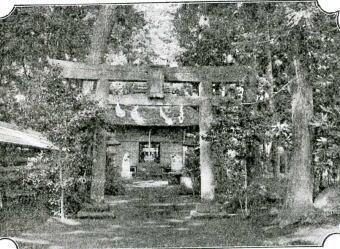 江古田氷川社1917.jpg