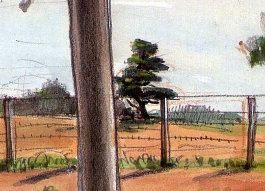 濱田煕「一本松」1938.jpg