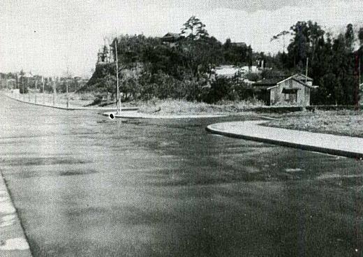 片山1941_2.jpg
