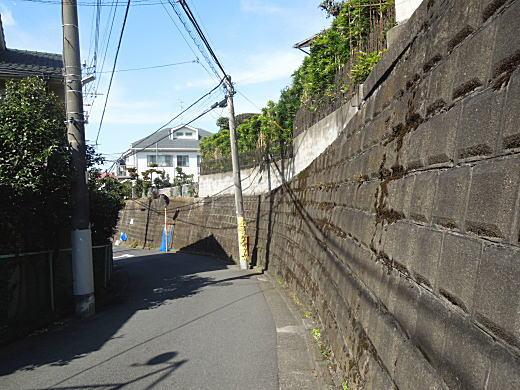 片山東南方高塚墳3.JPG