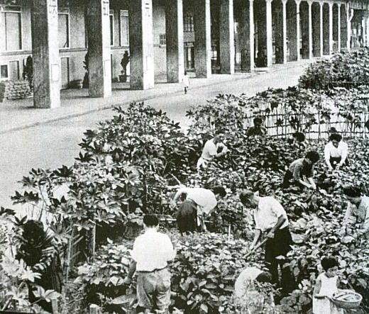 牛込区津久戸町1944.jpg