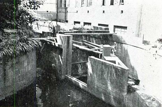玉川上水1963.jpg