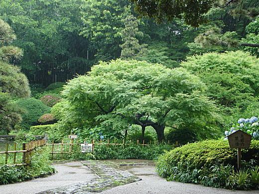 甘泉園1.JPG